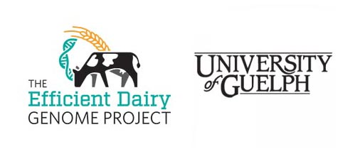 The Efficient Dairy Genome Project