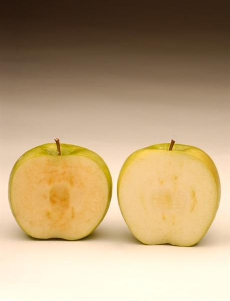 Bye Bye Brown Apples Livestock Gentec